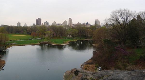 Central Park à Manhattan, le poumon vert - mes Souvenirs de Voyage