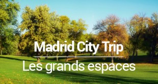 les grands espaces à Madrid - MSDV