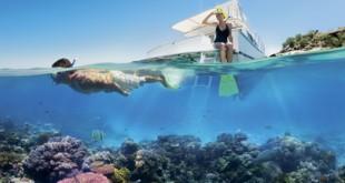 equipement pour plonger - MSDV