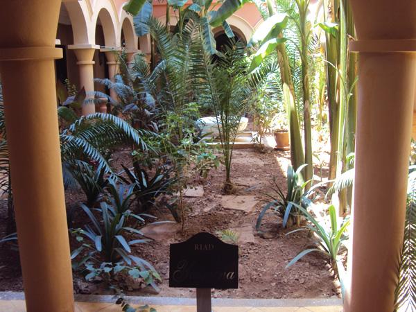 Hotel 5 etoiles Maroc patio