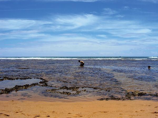 Piscines naturelles praia do forte Bresil