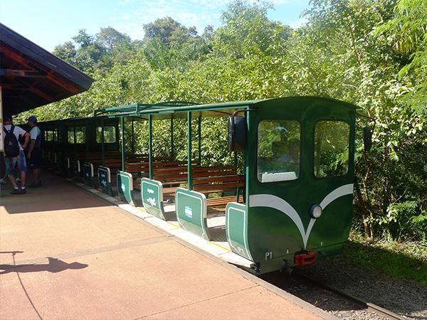 Train dans le parc d'Iguazu Argentine