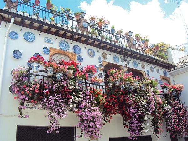 Quartier Sacromonte Grenade Andalousie Espagne MSDV