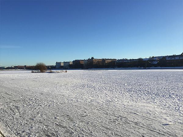 Lac gele à Copenhague MSDV