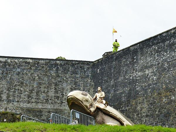 Tortue en bronze Namur