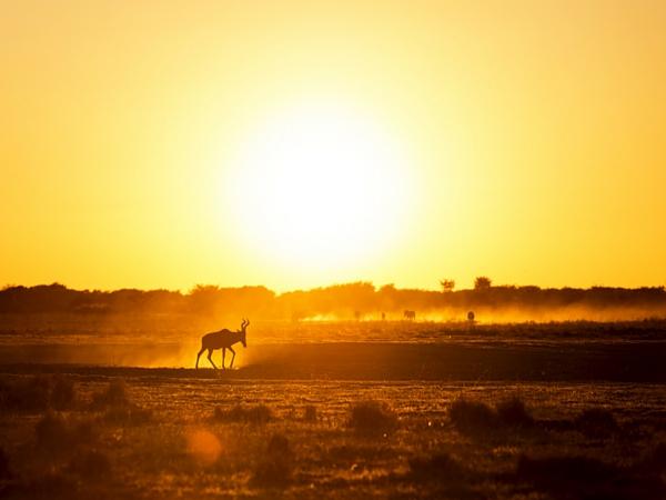 Afrique du Sud paysage