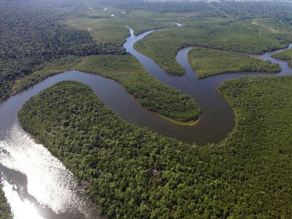 Amazone fleuve Brésil Amazonie