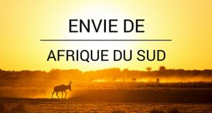 Envie de Afrique du Sud Big Five