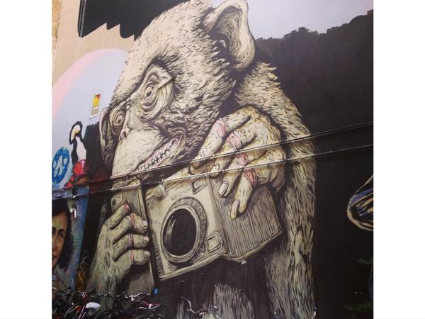 Street Art Berlin Europe singe