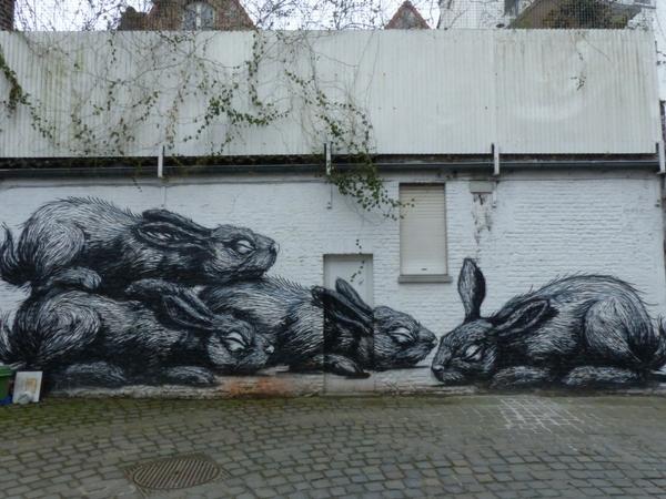 Street Art Gant Europe Roa Lapins