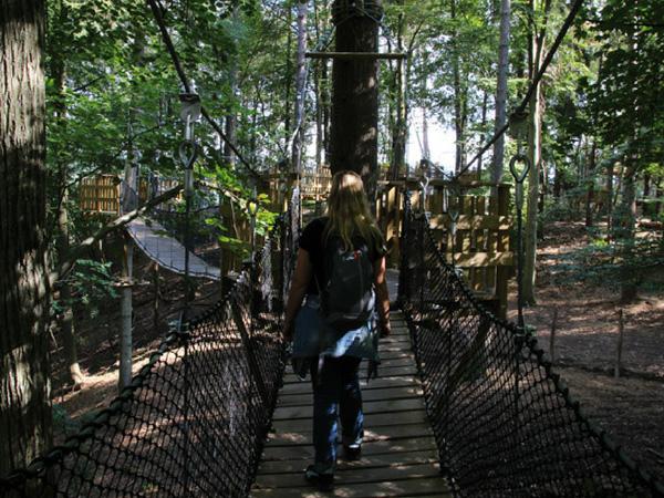 parcours-dans-les-arbres-grottes-de-han
