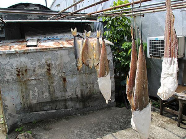 poisson-seche-tai-o-lantau