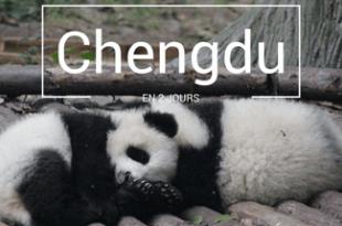 Chengdu Chine Pandas