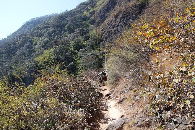 chemin Trek des Gorges du Saut du Tigre Yunnan Chine