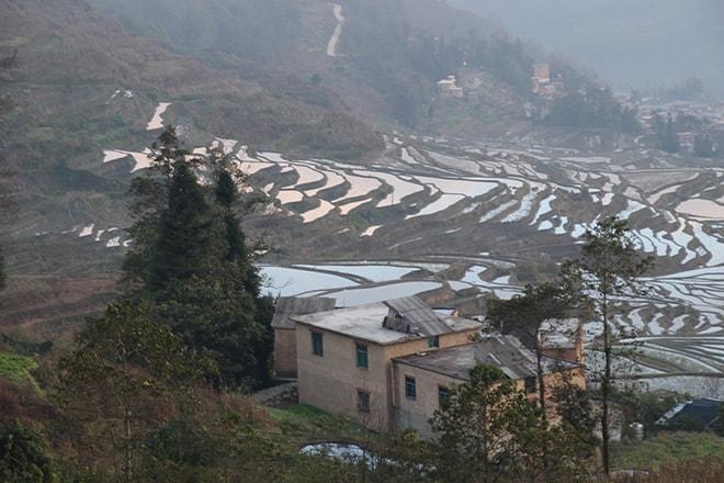 Riziere en terrasse depuis la place Yuanyang Chine