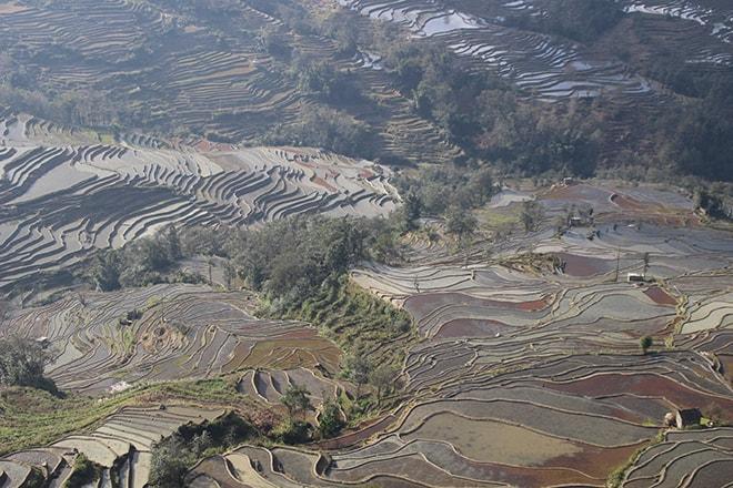 paysage multicolore Yuanyang Chine