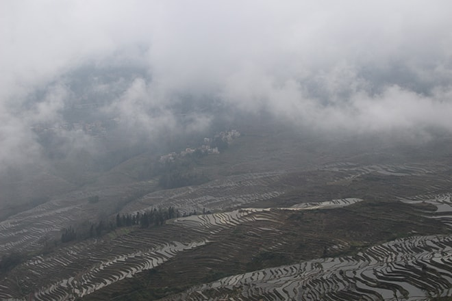 rizieres et brouillard Yuanyang Chine