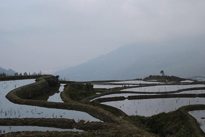 vue depuis la place sur les rizieres Yuanyang Chine