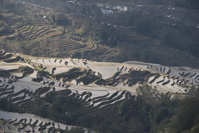 vue du haut rizieres en terrasse Yuanyang Chine