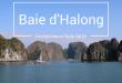Croisière sur la baie d'Halong depuis Cat Ba