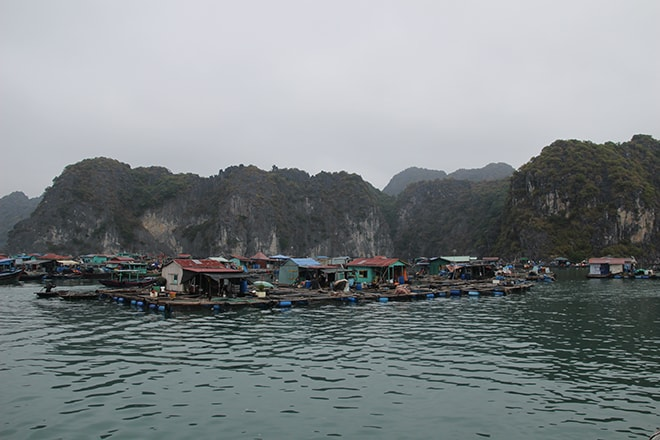 Village flottant Cat Ba Baie d'Halong Vietnam