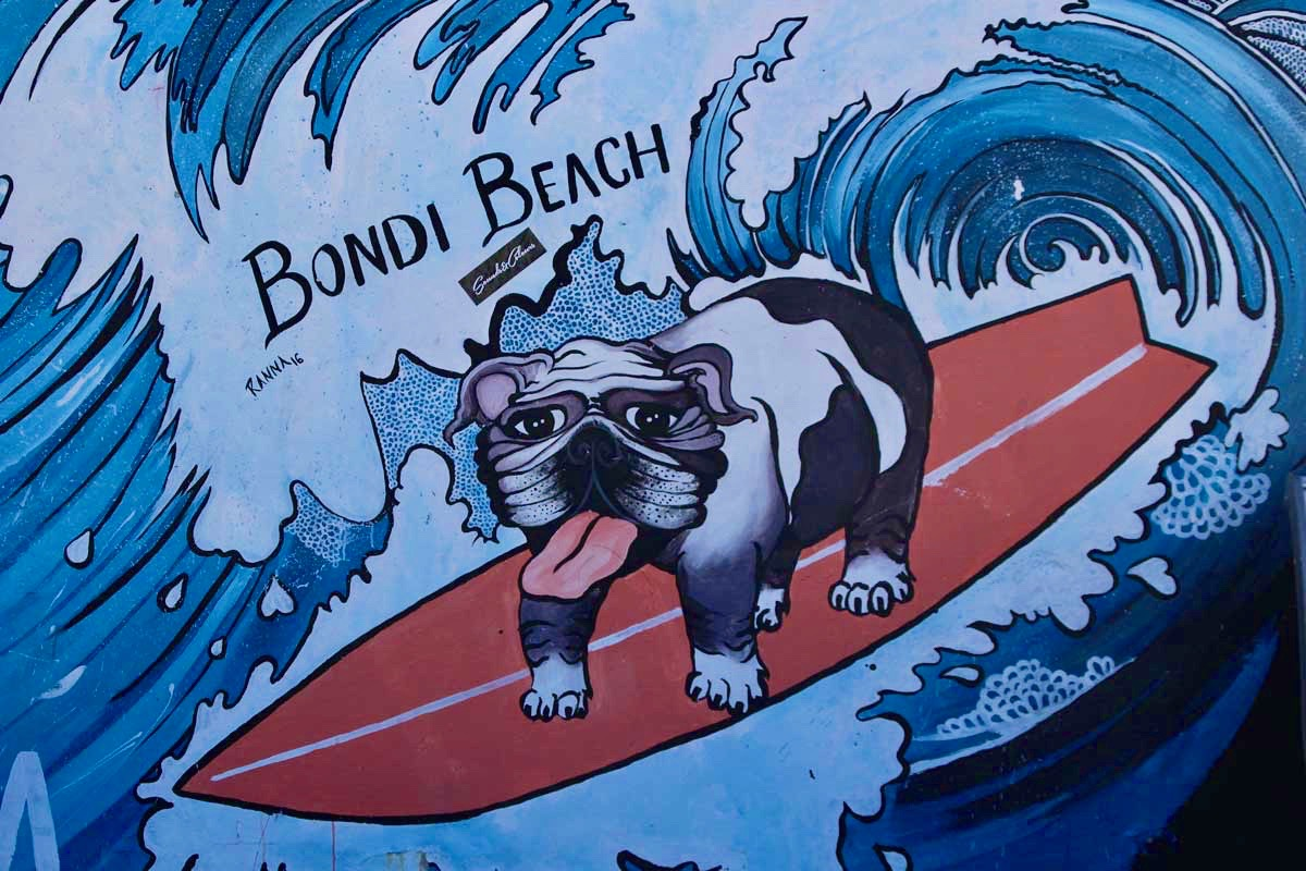 Street Art chien surf Bondi Beach Sydney