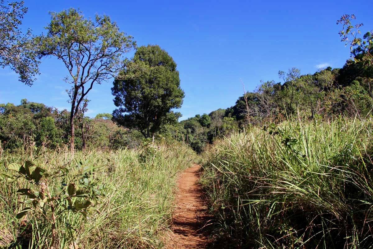 chemin colline Sen Monorom Mondulkiri