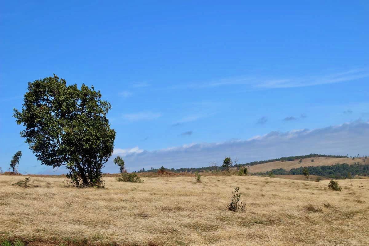 paysage Sen Monorom Mondulkiri