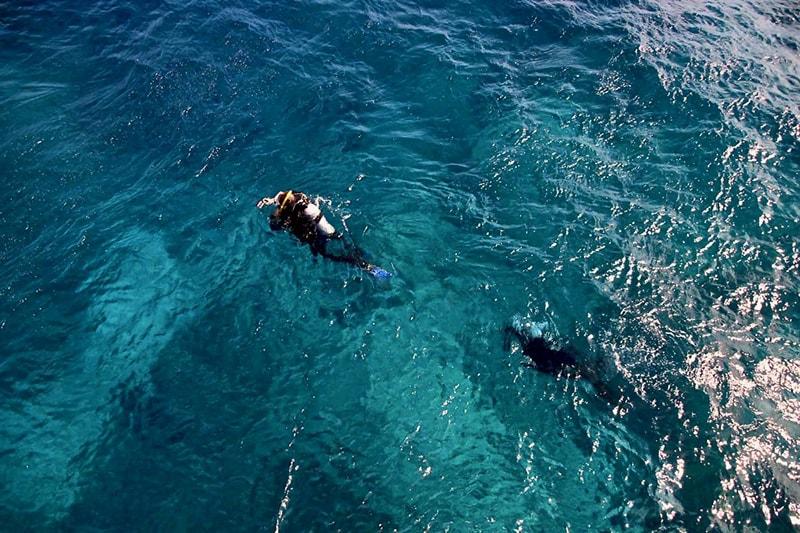 plongeurs Grande Barriere de Corail Cairns
