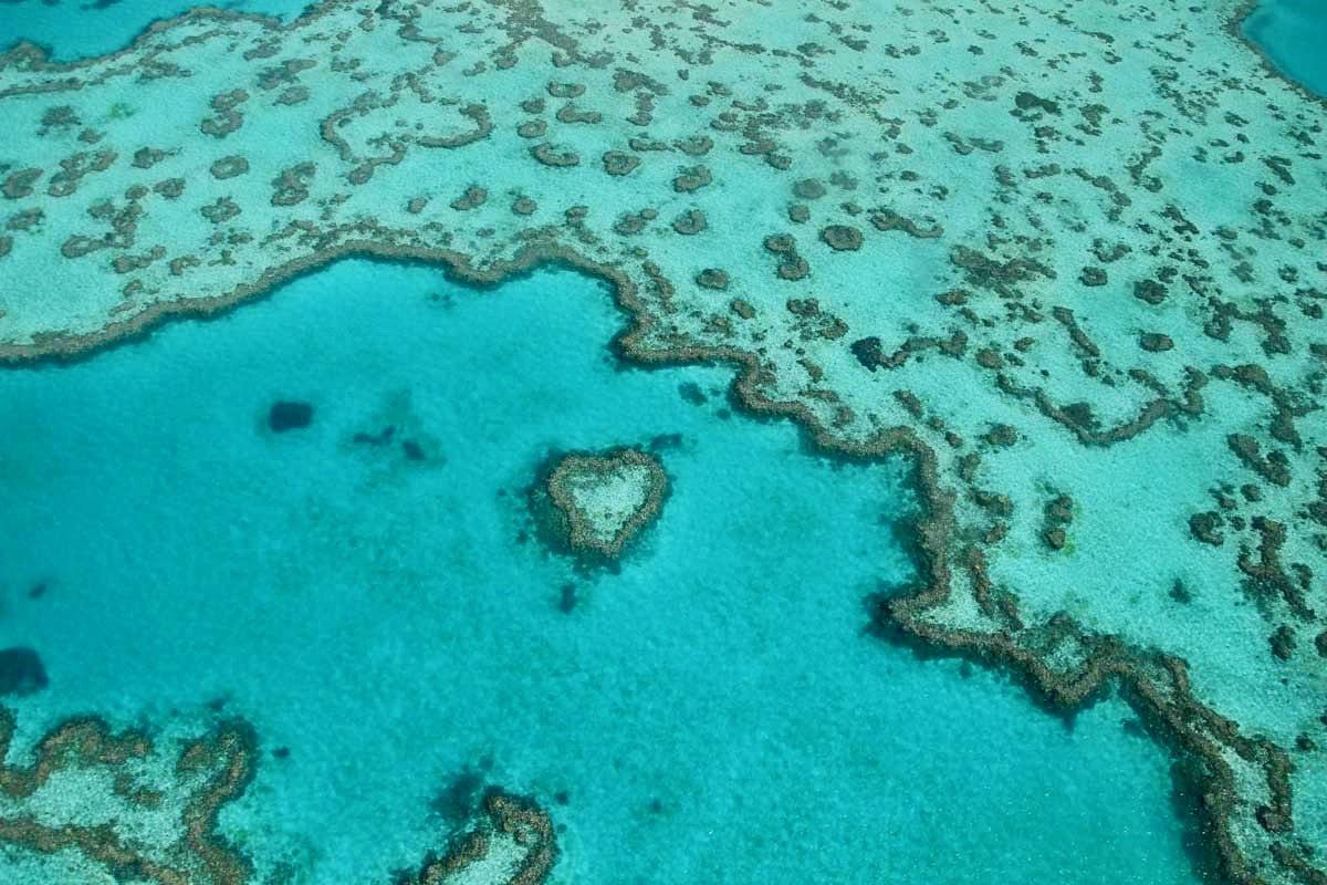 Heart Island grande barriere de corail