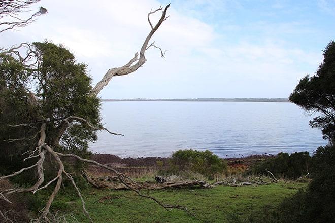 Vue Phillip Island